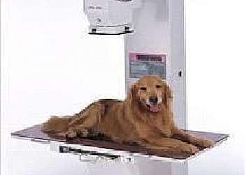 Equipamento de raio x portátil